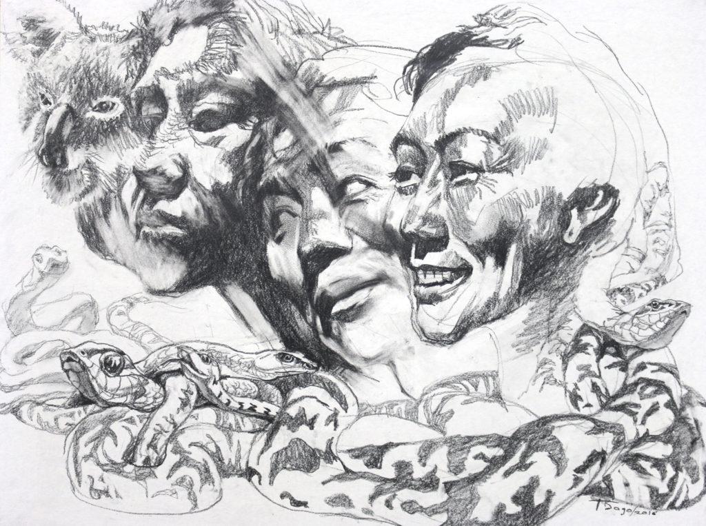 """Metamorphosis (2016), pencil on paper, 19""""x25"""""""