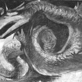 """Mythical Dragon (Four Powers Series) (2000), charcoal on paper, 34""""x24"""""""
