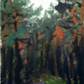 """Pine Forest (1987), color chalk on paper, 12""""x19"""""""