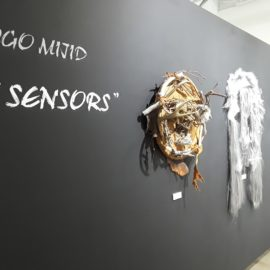 Mask Installation View